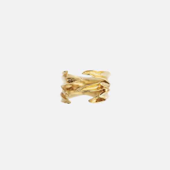 Golden monocotiledonea ring.