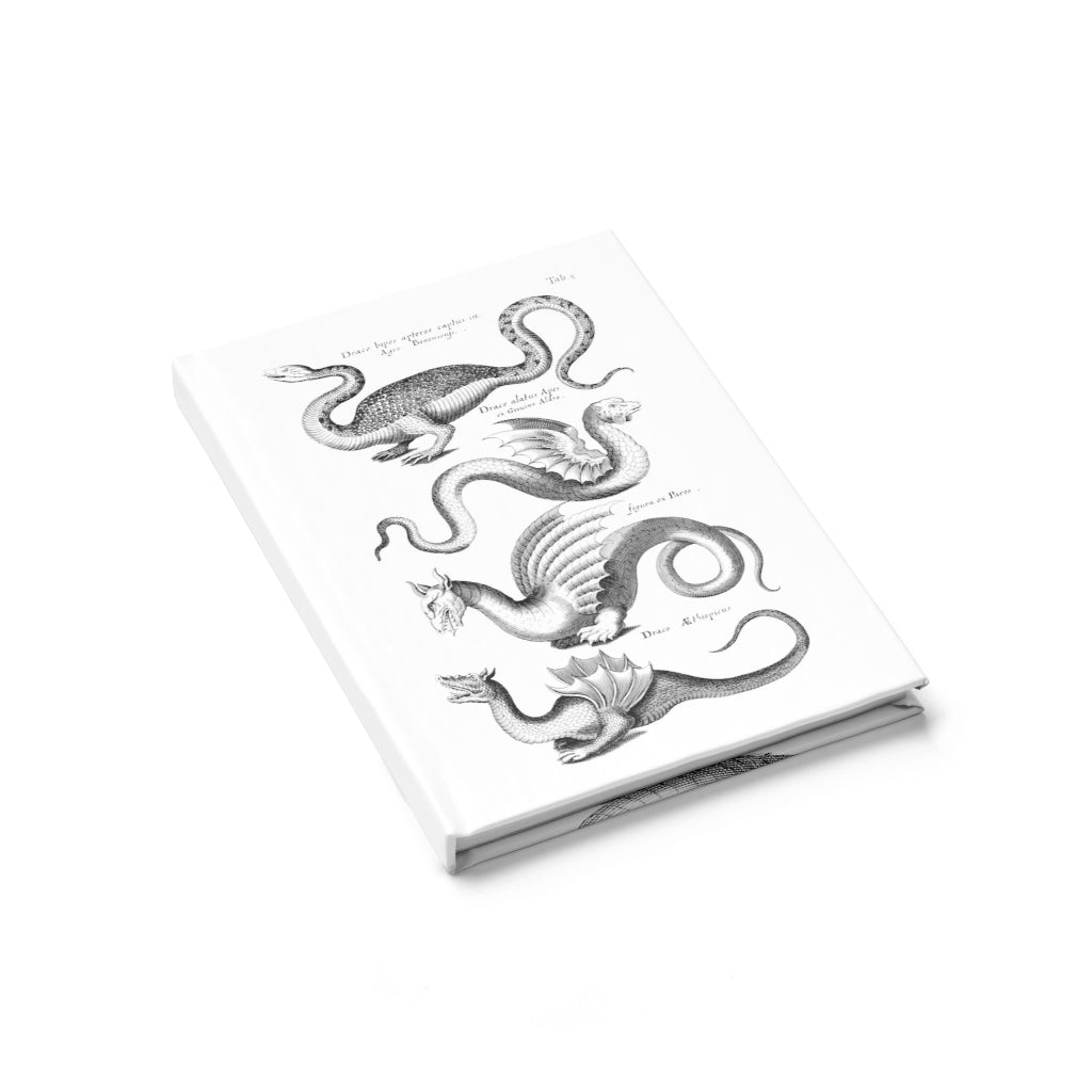 dragon journal 3
