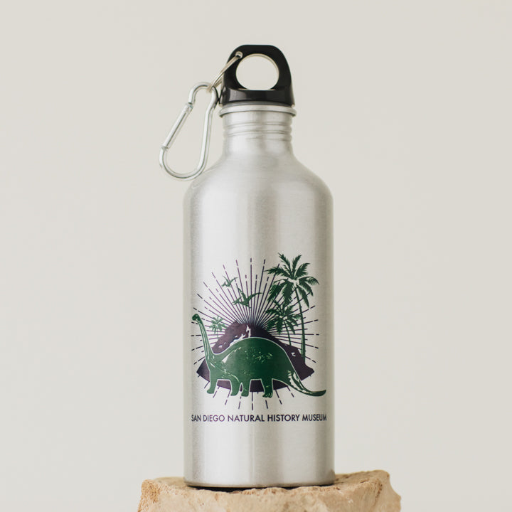 kids dinosaur water bottle 1