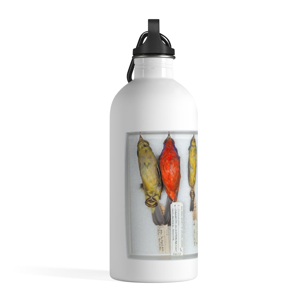 stainless steel water bottle 4