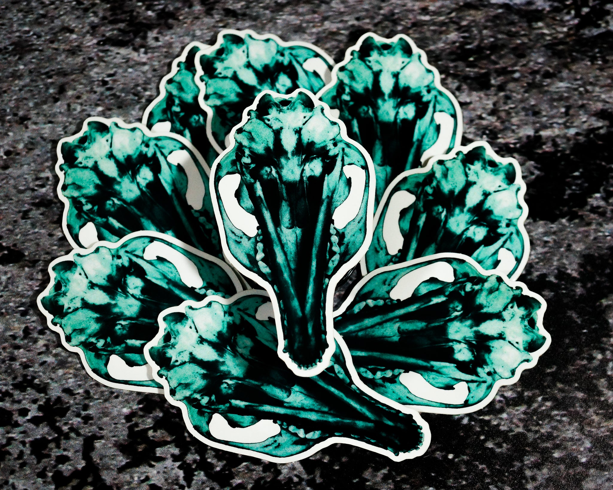 """Green Coyote Skull"" Sticker"