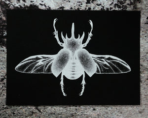 """Rhino Beetle"" Screenprint"