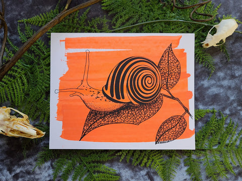 """Snail"" Screenprint"
