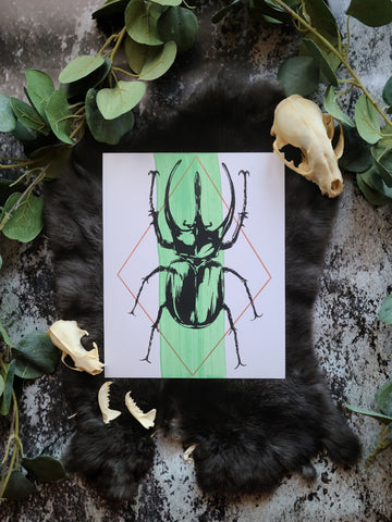"""Green and Copper Beetle"" Screenprint"