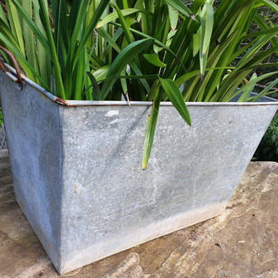 Large Rect Gal Planters - pod&seed online