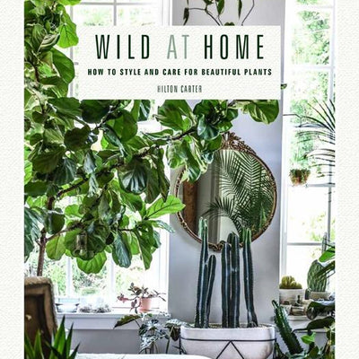 Wild at Home: How to Style and Care for Beautiful Plants - pod&seed online