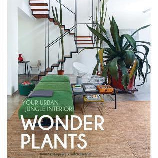 Wonder Plants : Your urban Jungle - pod&seed online