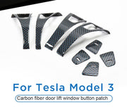 BLUE CARBON FIBER DOOR PIECES SET