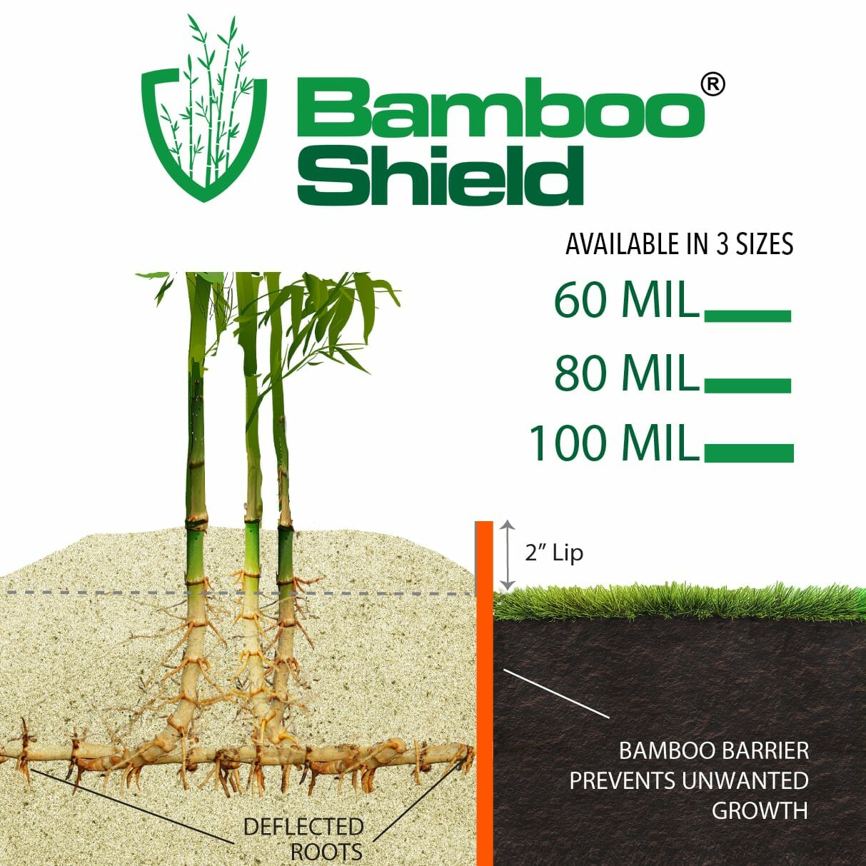 Bamboo Shield diagram and thickness view of 60 mil, 80 mil, and 100 mil.