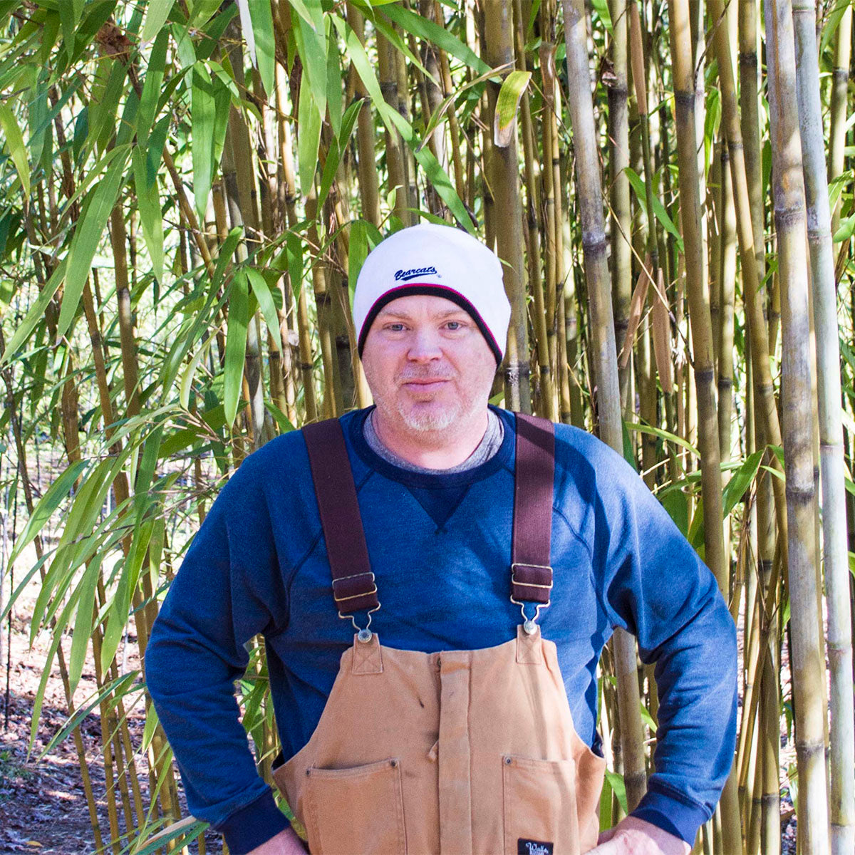 Nursery Manager of Lewis Bamboo - Greg Brown