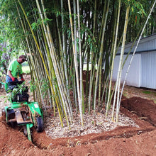 Load image into Gallery viewer, bamboo shield trenching machine