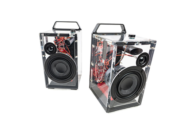 Dillinger Aquarius Matched Speaker Pair (One Transmitter Free with Purchase)
