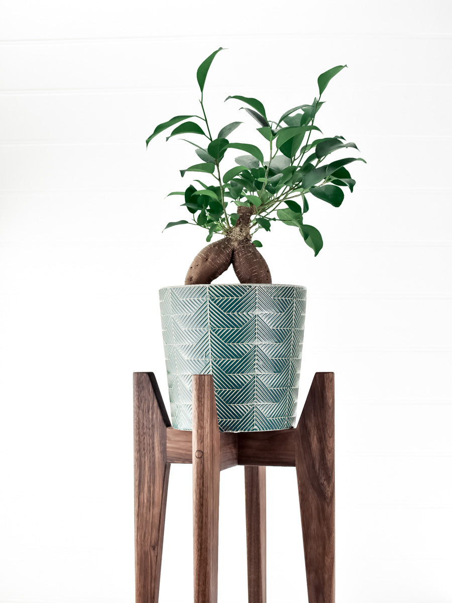 Black Walnut - Atlas Plant Stand