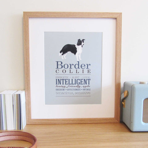 Border Collie Dog Breed Print
