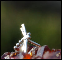 Dragonfly Nose Stud