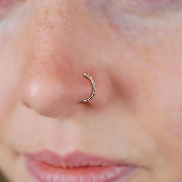 gold and silver nose ring