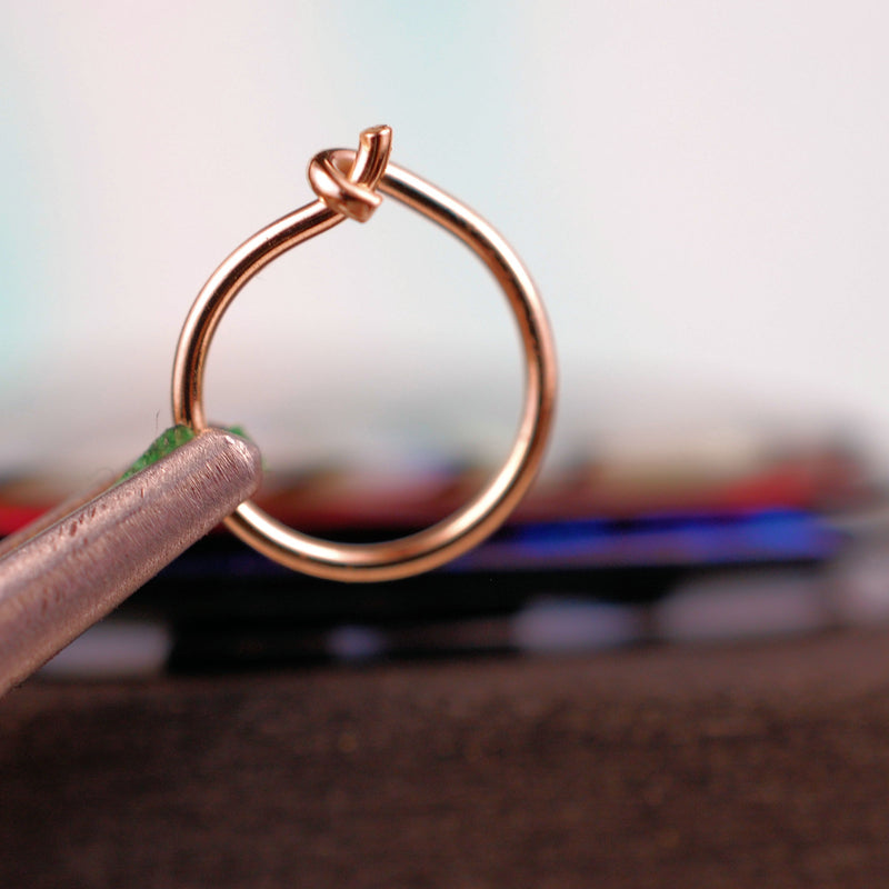 products/RG_Latched_Hoop_1.jpg