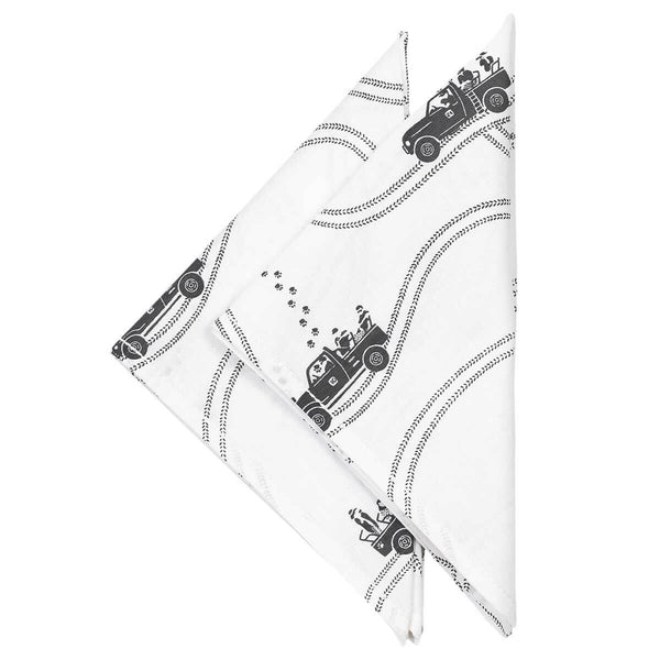 Tracks and Trails Napkins - Set of 2