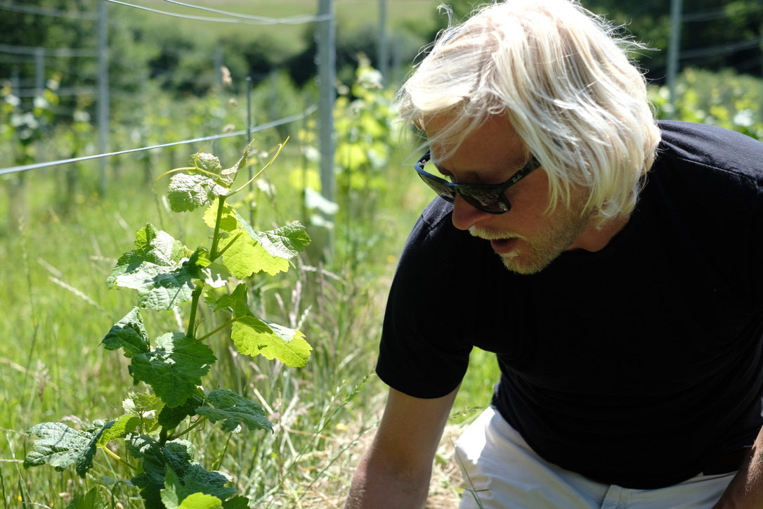 Ben Walgate from Tillingham in his Trousseau vineyard, planted in 2019 with the help of our very own Ellen Doggett