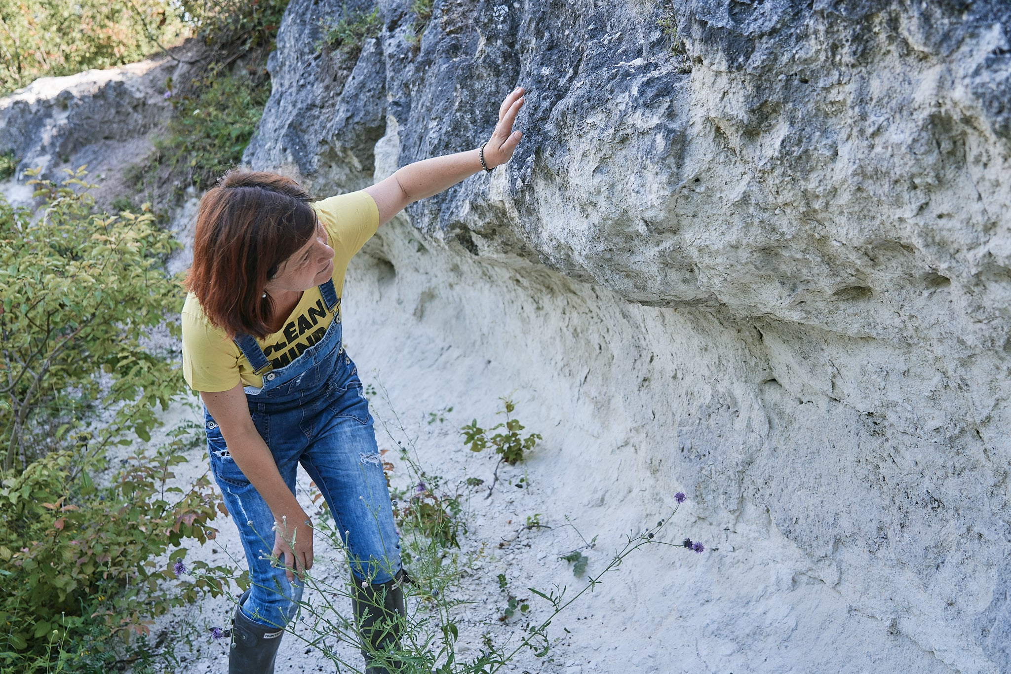 The schist, shell limestone and quartz of the Leitha Mountains give Birgit Braunstein's wines a terrior-specific minerality.