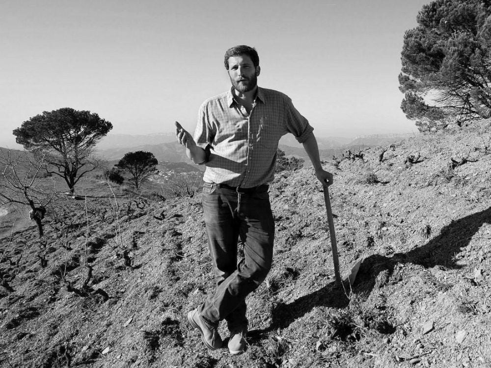 Producers like Dominik Huber at Terroir al Limit in Priorat are showing the potential of 'humble' Carignan.