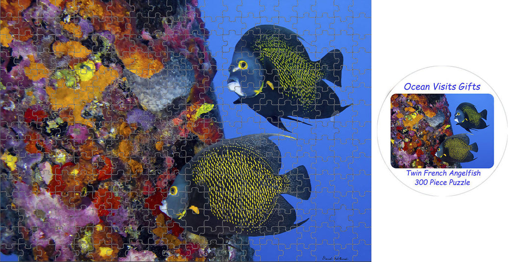 Jigsaw Puzzle 300 Piece` French Angelfish