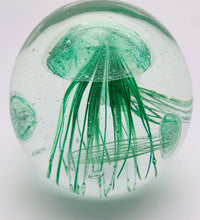 Load image into Gallery viewer, Jellyfish Aquarium - Glow In The Dark