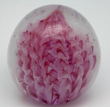 Load image into Gallery viewer, Pink Feathers - Large Paperweight