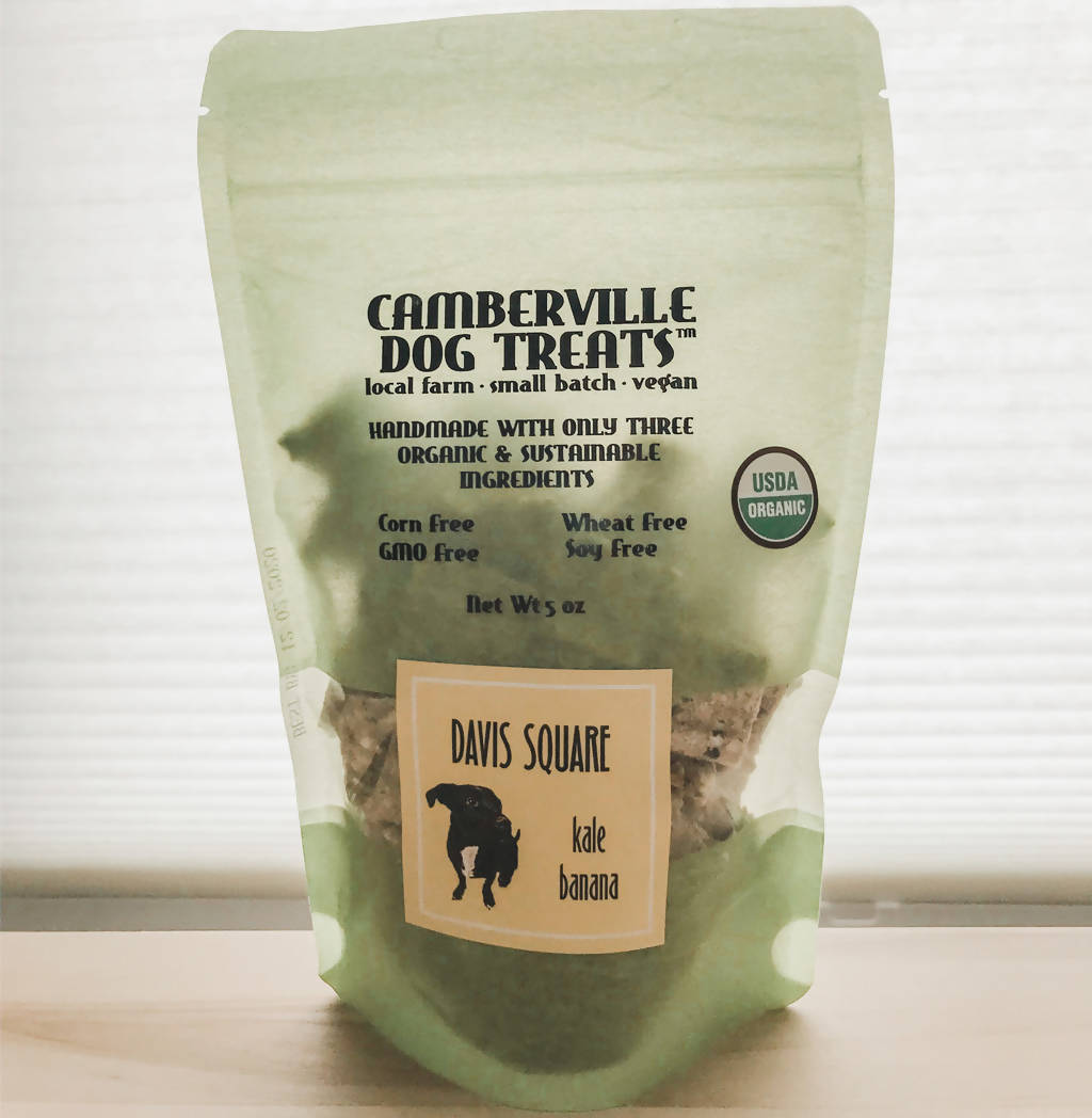 Davis Square Dog Treats