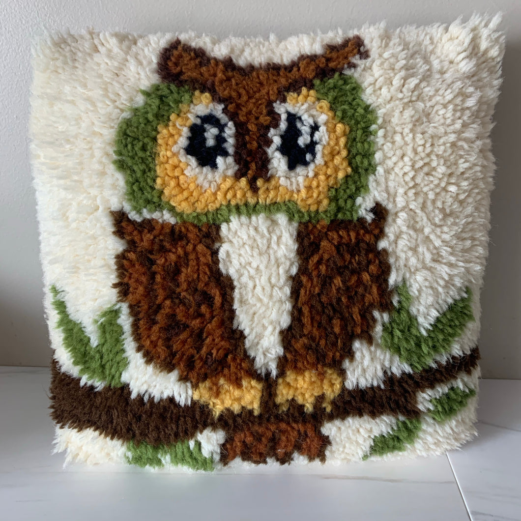Brown Owl 🦉 Throw Pillow