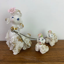 Load image into Gallery viewer, Spaghetti Poodle Family, Made in Japan