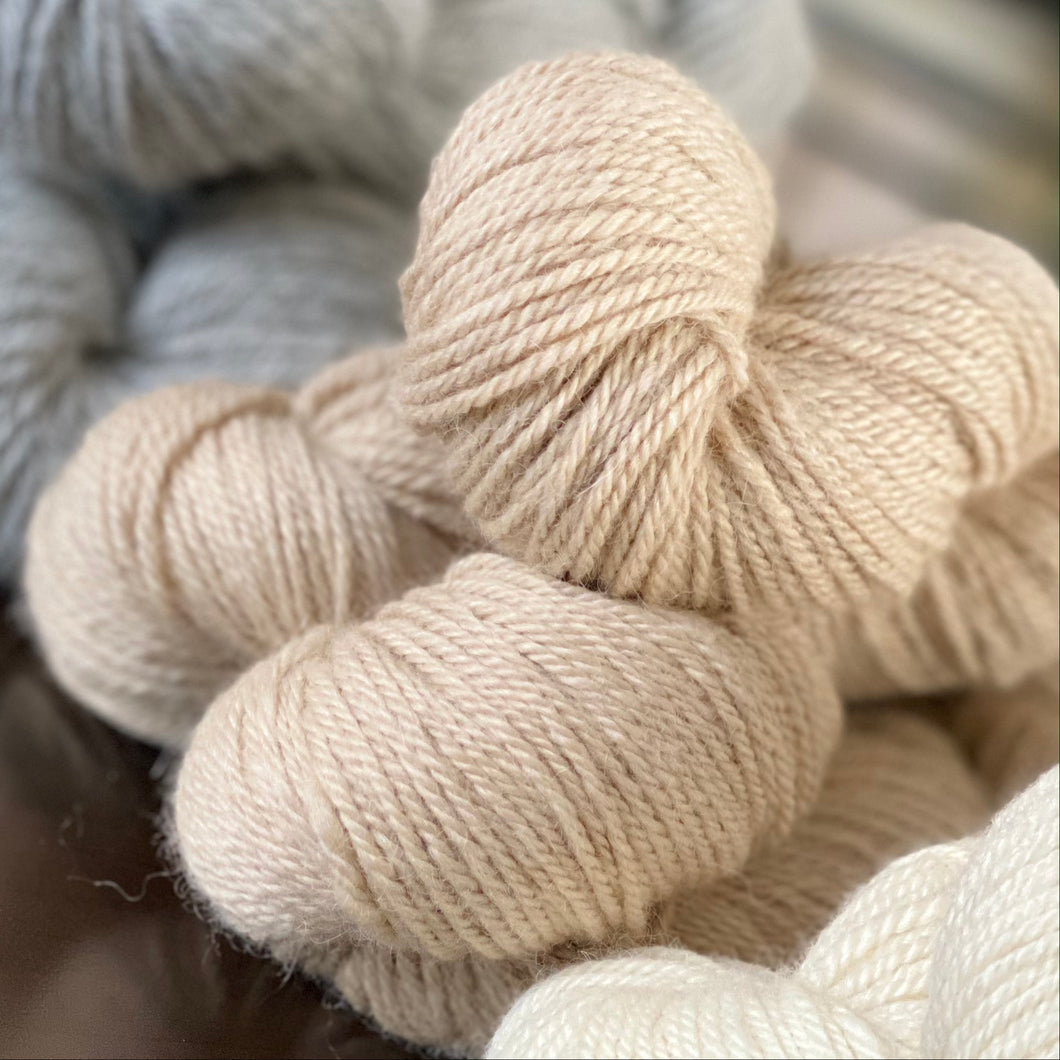 Royal Birch | Worsted | Oatmeal | au Naturel