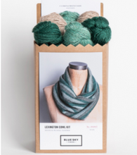 Load image into Gallery viewer, Blue Sky Fibers Lexington Cowl Kit