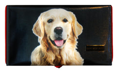 Golden Retriever Black