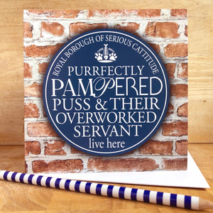 Pampered Puss Owner Blue Plaque Card