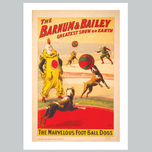 Barnum & Bailey - Circus Dogs