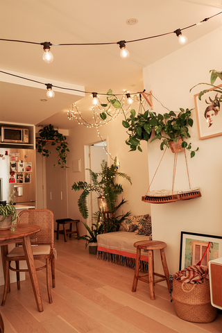 Boho-inspired home with many plant inside