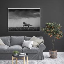 Load image into Gallery viewer, Rain In June
