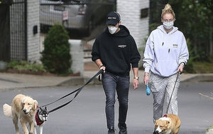 Joe Jonas and Pregnant Wife Sophie Turner Take Their Dogs For A Walk In Wolven and Face Masks