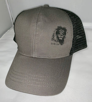 Econscious Eco Trucker Organic Recycled Hat - Be the Lion Motivational Hat - Lion Hat - Eco Friendly Hat - Inspirational Hat - Trucker Hat