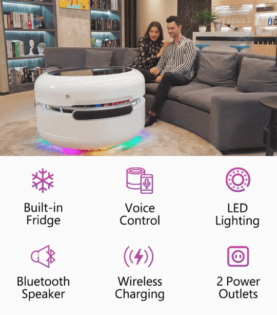 A Built in Fridge Smart Voice Control