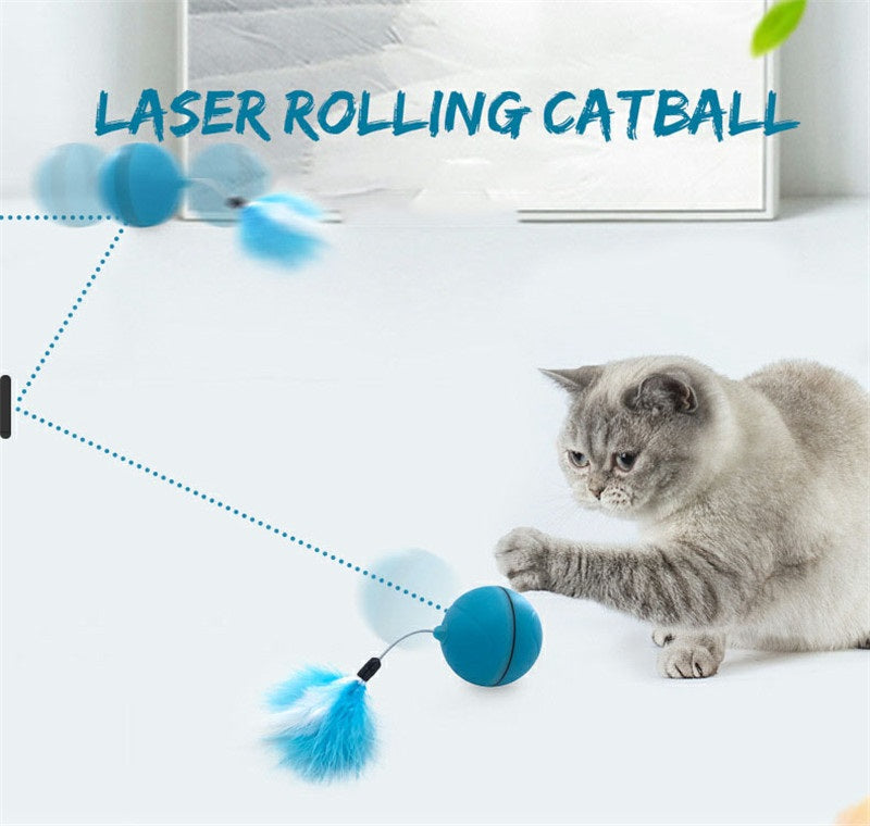 Interactive Automatic Rolling Ball for Cats