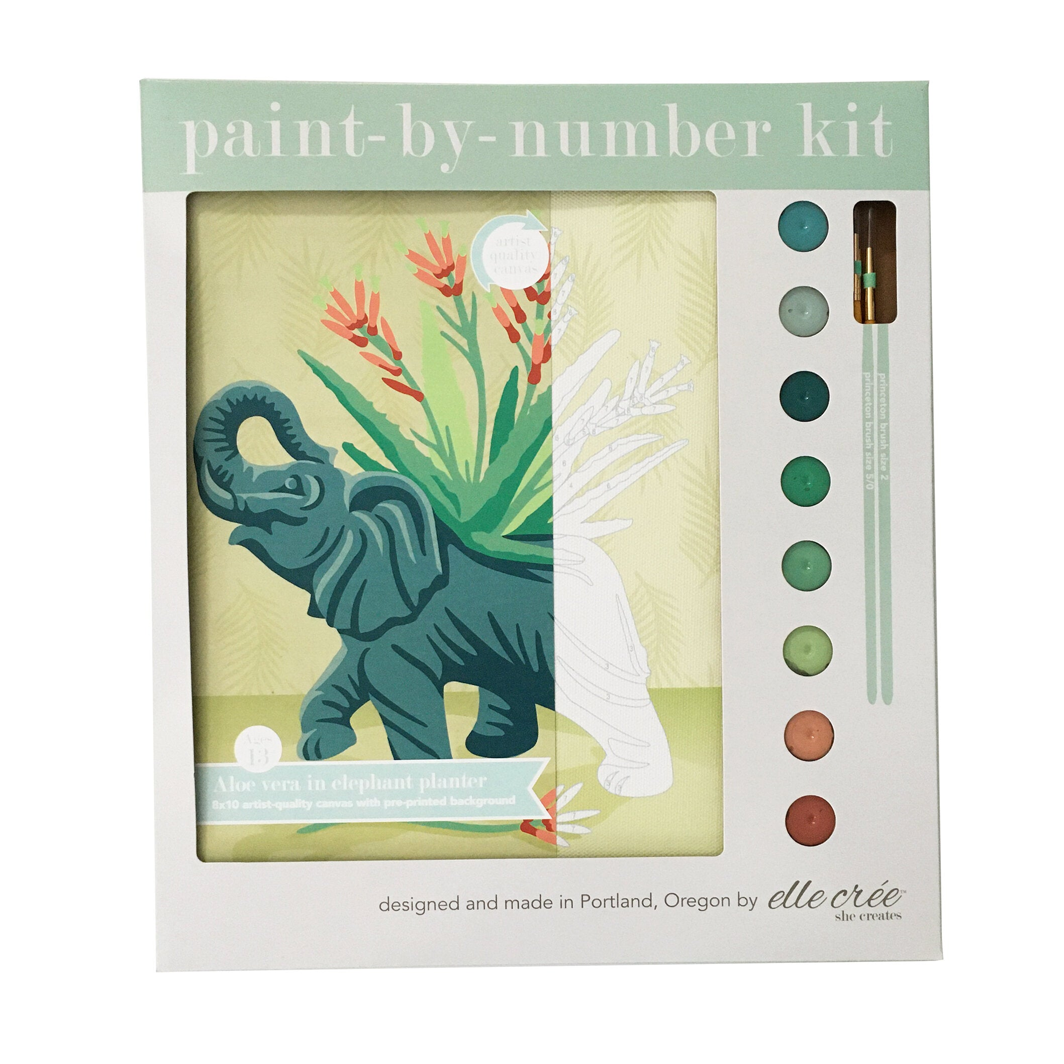 Aloe Vera in Elephant Planter Paint-By-Number Kit