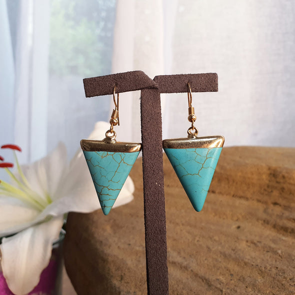 Turquoise Howlite Earrings - AgiMagi