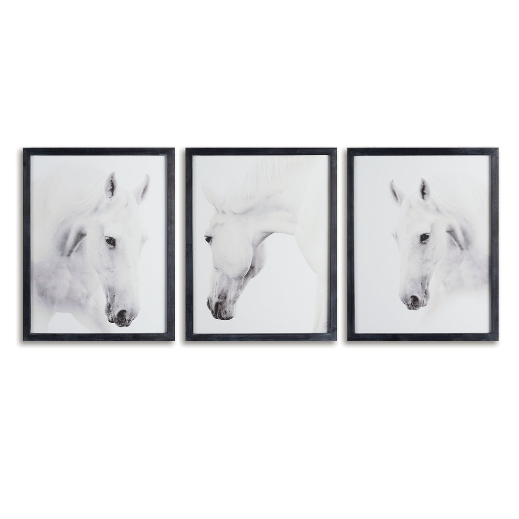 WILD HORSES PHOTOGRAPHIC PRINTS, SET OF 3