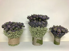 Load image into Gallery viewer, Dried lavender & Mint Wedding Bouquet Ceremony Table Centerpieces Mother's Day// Made and Grown in the USA //Easter and Spring Centerpieces