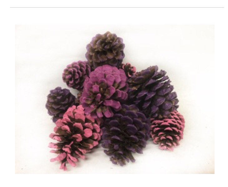 Purple Pink Magenta tipped pinecones- pink Christmas decor