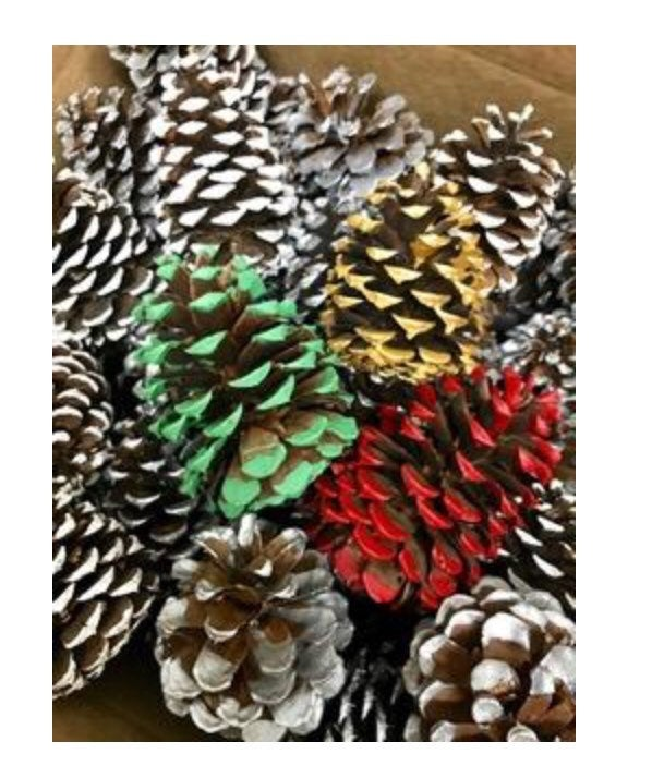 Holiday pinecones assortment tipped in gold silver white red and green