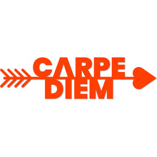 "Load image into Gallery viewer, ""Carpe Diem"" Arrow Metal Art Sign"