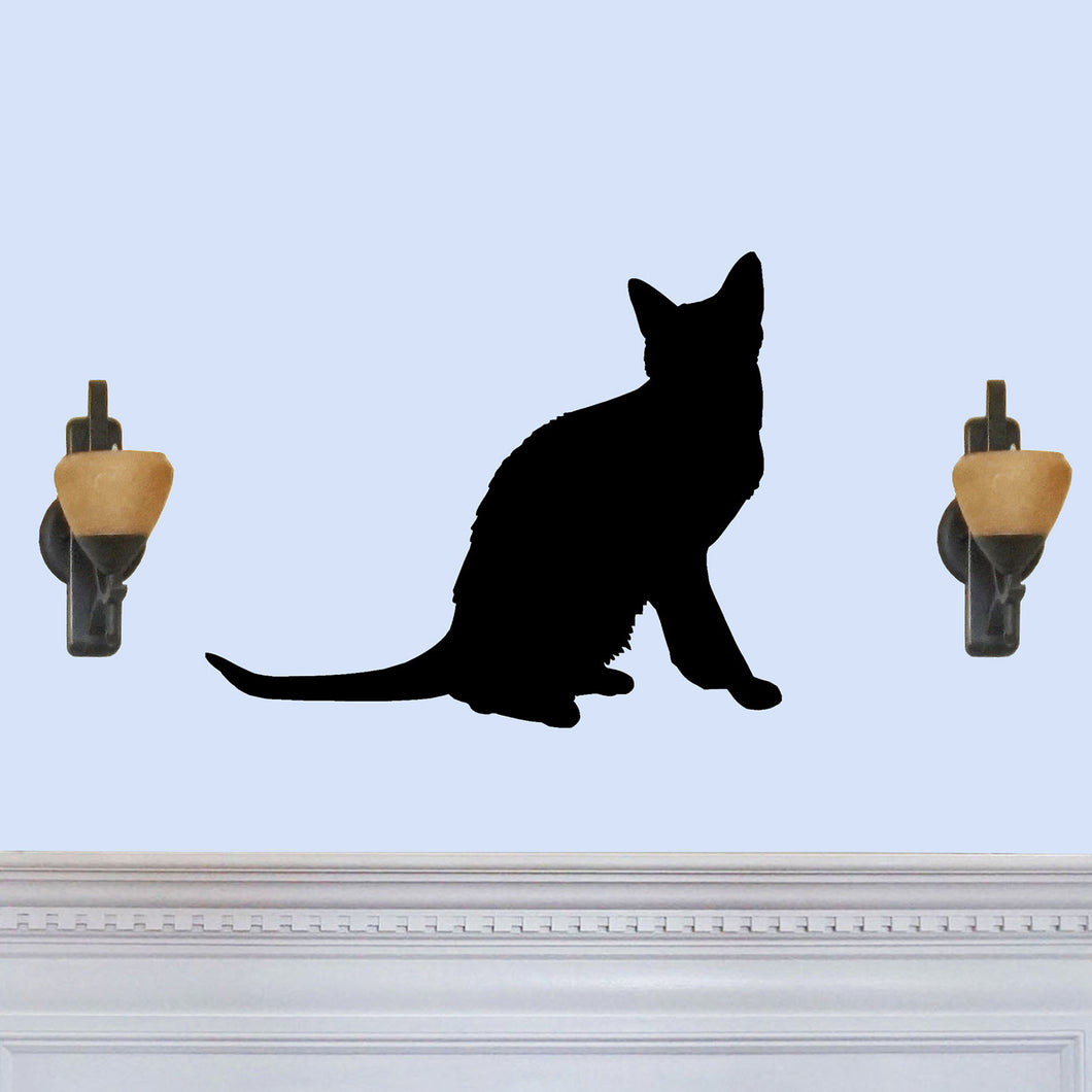 Korat Cat Breed Silhouette Sign